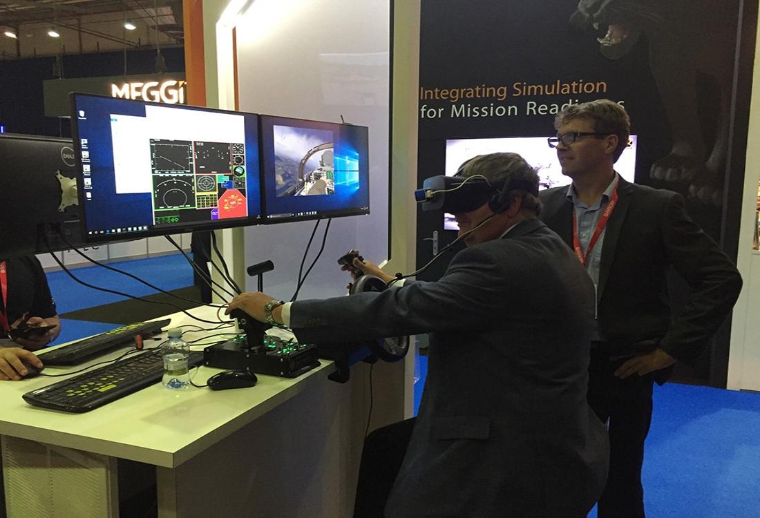 Virtual reality flight simulator